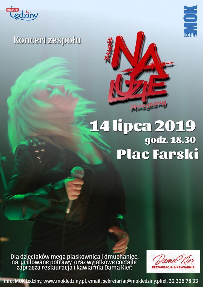 Koncert zespołu NaLuzie